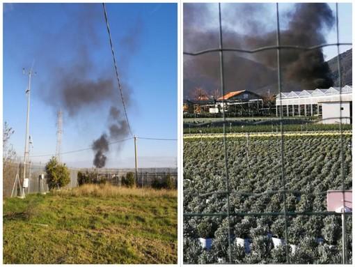 Albenga, brucia plastica in località Coste di Leca: uomo deferito dai carabinieri forestali