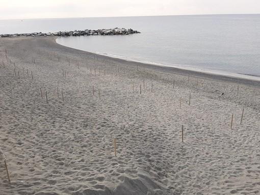 Celle, riaprono le spiagge libere ai Piani e a Punta Aspera ma rimangono chiuse alle foce del Ghiare e San Bastian