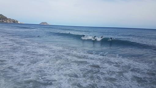 """Alassio, la sfida di un esperto in scienze ambientali marine, Alessio Rovere, e un ex campione italiano di surf, Filippo Orso: """"Difendiamo la spiaggia con opere moderne che non uccidano il surf"""""""