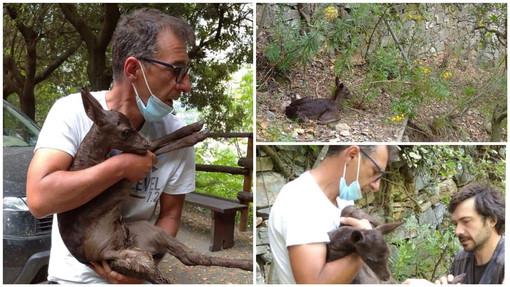 Foto tratte dalla pagina Facebook 'Grotte di Toirano'