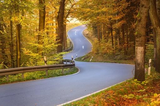 """Coldiretti: """"Bene il dialogo avviato per migliorare e rendere sicuri 750 km di strade provinciali"""""""