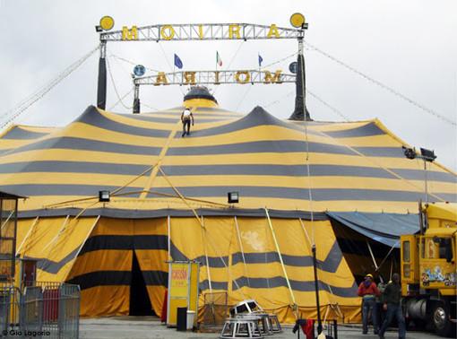 Savona, l'emergenza Coronavirus blocca il Circo Millennium: debutto rinviato al 13 marzo