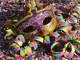 """""""Gran ballo nel paese dei balocchi"""": domenica 1 marzo festa di Carnevale al  Centro Polifunzionale """"Le Officine"""" di Savona"""