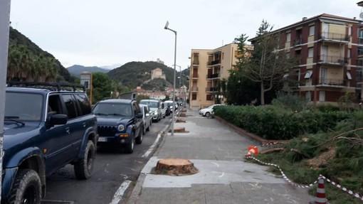 Il serpentone di auto in via Dante questa mattina, 29 ottobre