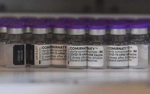 Continuano le vaccinazioni, come saranno i mesi estivi e autunnali